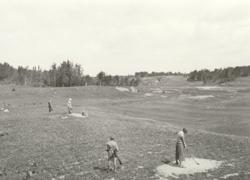 Teeing Off: Golf's Beginnings in Kenora