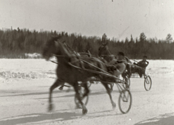Horse Racing On Lake of the Woods