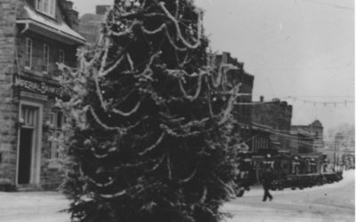 The Tradition of the Downtown Christmas Tree in Kenora