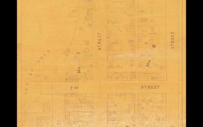 Archives Awareness Week 2021: Plan of Rat Portage, Ontario (1880-81)